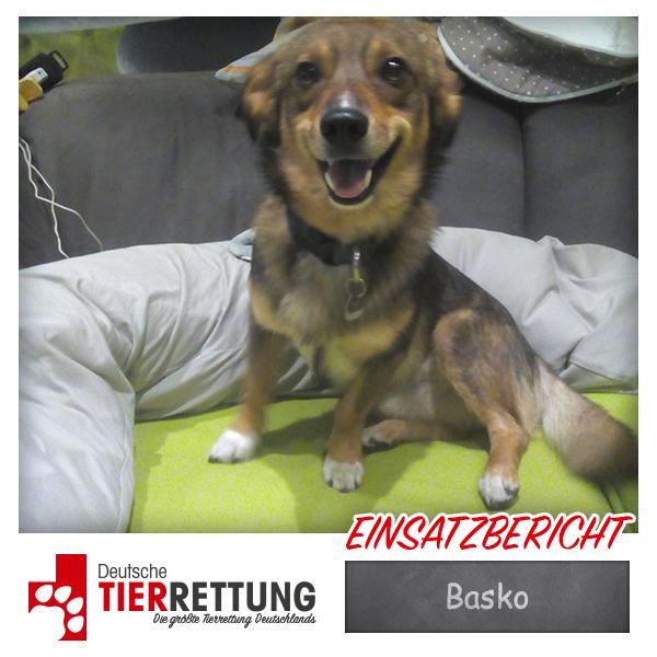 Tierrettung Einsatz: Basko in Duisburg