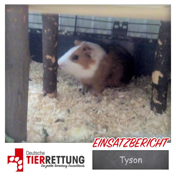 Tierrettung Einsatz: Tyson in Krefeld