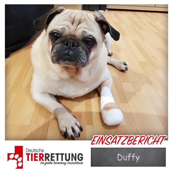 Tierrettung Einsatz: Duffy in Lünen