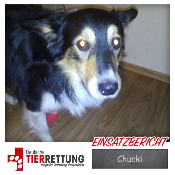 Chucki