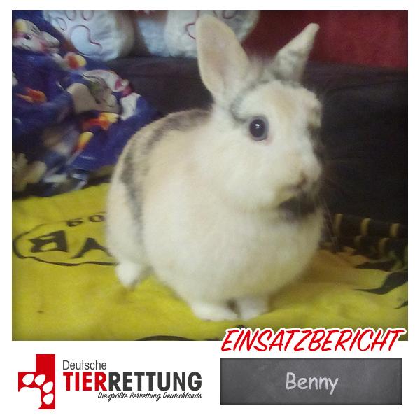 Tierrettung Einsatz: Benny in Dortmund
