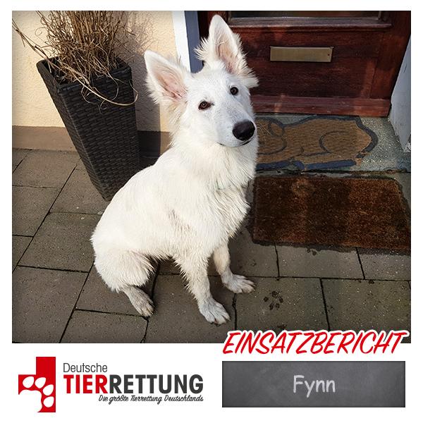 Tierrettung Einsatz: Fynn in Heiligenhaus