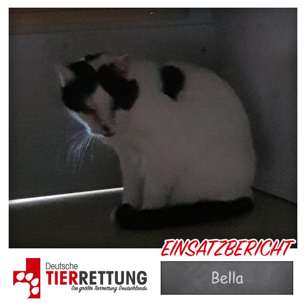 Tierrettung Einsatz: Bella in Krefeld