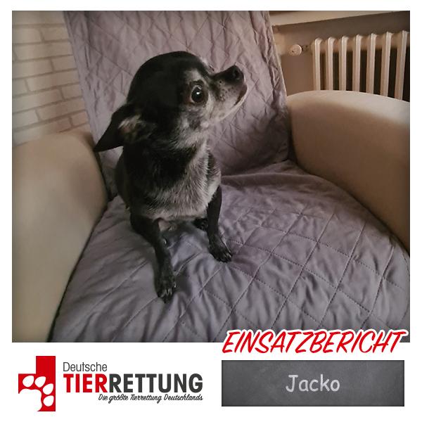 Tierrettung Einsatz: Jacko in Heiligenhaus