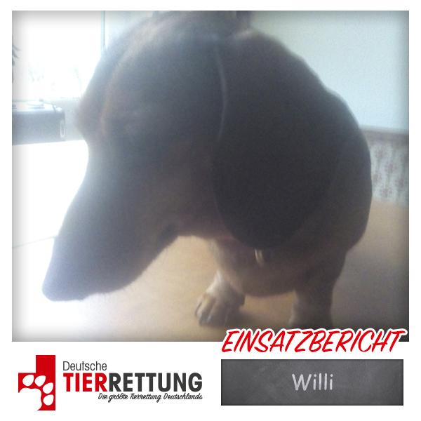 Tierrettung Einsatz: Willi in Gevelsberg